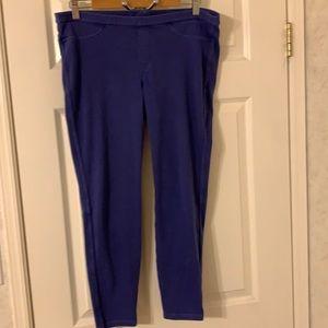 Hue purple stretchy pant